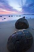 Moeraki Boulders at Dawn South Island New Zealand