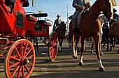Feria de Abril The April Fair  ´El Real´  Seville, Andalusia, Spain