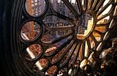 Barcelona, Sagrada Familia: Works of construction in the interior