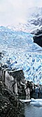 Glaciar Serrano with glacial lake, Patagonia, Chile  America, South America, Chile, Patagonia, February 2003