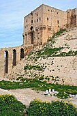 Aleppo citadel, Syria