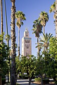 Morocco Marrakesh Koutoubia Gardens and Koutoubia Mosque