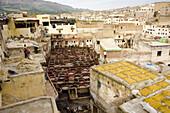 Chouara tannery, high angle view, Medina of Fez, Morocco