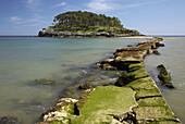 San Nicolas  Garraitz) island, Lekeitio, Vizcaya  Bizkaia), Basque Country, Spain