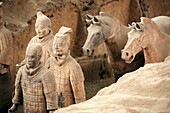 Archaeology, Army, Art, Arts, Asia, China, Color, Colour, Historic, Historical, History, Horizontal, Horse, Horses, indoor, indoors, interior, Mausoleum, Mausoleums, power, Sculpture, Sculptures, Shaanxi, Shanxi, Shensi, Sian, Soldier, Soldiers, Statue, S