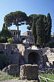 The Palatine hill and flavian palace as viewed from the Imperial Roman Forum Rome Lazio Italy