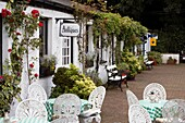 antique shops and cafe tables in the courtyard greyabbey county down northern ireland