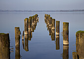 old ruined abandoned jetty stantions leading off into lough neagh county armagh northern ireland