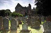 cistercian abbey ruin and graveyard at greyabbey county down, northern ireland