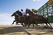 Horse racing in the Australian outback at the annual Birdsville Cup Races  Birdsville, Queensland, Australia