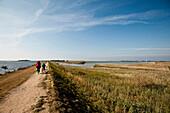 Zwei Leute beim Fahrradfahren, Vater und Sohn, Hafen von Orth, Fehmarn, Ostsee, Schleswig-Holstein, Deutschland