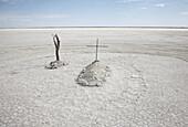 Graves at dryed Ntwetwe salt lake, Botswana, Africa