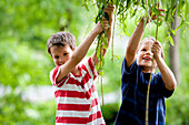 Two boys (6 -7 years) holding on twigs