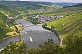 Schleuse bei Enkirch an der Mosel, Weinanbau, Rheinland-Pfalz, Deutschland, Europa