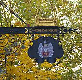 Neumagen-Dhron, Old wine district, Mosel, Rhineland-Palatinate, Germany, Europe
