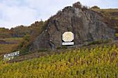 Weinlage Neumagener Sonnenuhr, Neumagen, Weinanbaugebiet, Mosel, Rheinland-Pfalz, Deutschland, Europa