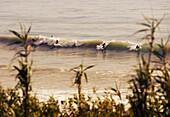 Beach, Ocean, Outdoors, People, Sea, Sport, Surf, Surfer, Surfing, Water, Wave, Waves, A75-1073208, agefotostock