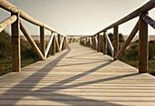 Aussen, Draussen, Holz, Hölzern, Landschaft, Landschaften, Pfad, Strand, Strände, Wald, A75-1073219, agefotostock