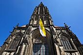 D-Muenster, Westfalen, Muensterland, Nordrhein-Westfalen, St Lamberti-Kirche, Spaetgotik, Froschperspektive, D-Muenster, Westphalia, Muensterland, North Rhine-Westphalia, Saint Lamberti Church, Late Gothic, worms eye view *** Local Caption *** D-Muenster