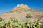 Morocco - The spectacularly sited agadir = fortified granary of Tizourgane in the Anti-Atlas mountains in southwest Morocco The slopes are grown with prickly pear Opuntia ficus-indica Anti-Atlas mountains, southwest Morocco