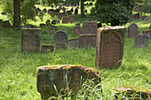 Jewish churchyard Heiliger Sand, Worms, Rhenish Hesse, Rhineland-Palatinate, Germany, Europe