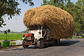 Tractor with cereals on a country road, Kayin State, Myanmar, Birma, Asia