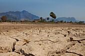 Hut on dry clay soil, karst mountains in the background, Kayin State, Myanmar, Birma, Asia