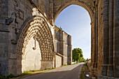 Ruins of monasty San Anton, near Castrojeriz, Camino Frances, Way of St. James, Camino de Santiago, pilgrims way, UNESCO World Heritage, European Cultural Route, province of Burgos, Old Castile, Castile-Leon, Castilla y Leon, Northern Spain, Spain, Europe