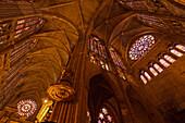 Inside the gothic cathedral Santa Maria de Regla, 13th century, Leon, Camino Frances, Way of St. James, Camino de Santiago, pilgrims way, UNESCO World Heritage, European Cultural Route, province of Leon, Old Castile, Castile-Leon, Castilla y Leon, Norther
