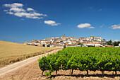 Cirauqui, village on the Camino Frances, Way of St. James, Camino de Santiago, pilgrims way, UNESCO World Heritage, European Cultural Route, province of Navarra, Northern Spain, Spain, Europe