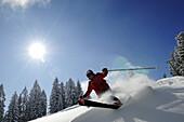 Skier going downhill, Reit im Winkl, Chiemgau, Upper Bavaria, Bavaria, Germany, Europe