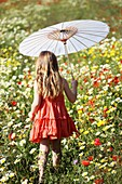Caucasian ethnicity, child, childhood, Female, field, flower, girl, kid, spring, young, youth, F57-1148254, AGEFOTOSTOCK