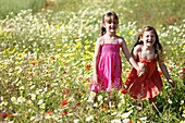 Caucasian ethnicity, child, childhood, Female, field, flower, girl, kid, spring, young, youth, F57-1148260, AGEFOTOSTOCK