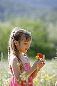 Caucasian ethnicity, child, childhood, Female, field, flower, girl, kid, spring, young, youth, F57-1148962, AGEFOTOSTOCK