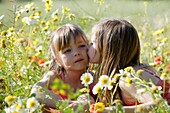 Caucasian ethnicity, child, childhood, Female, field, flower, girl, kid, spring, young, youth, F57-1148996, AGEFOTOSTOCK