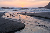 USA, Oregon, Lincoln County, Seal Rock State Recreation Area, beach with creek flowing across, gulls and rocks at sunset, August