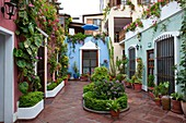The interior courtyard of the El Patio Hostal in Miraflores, Lima, Peru, South America