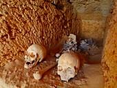 Ptolomeic skulls, Alexandria, Egypt, Taposiris magna