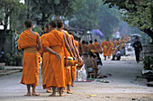 Buddhist monks collecting alms in the early morning, Luang Prabang, Laos
