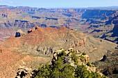 South Rim Grand Canyon National Park Arizona