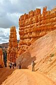 Visitors on Rim Trail Bryce Canyon National Park Utah