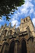 St-Nazaire cathedral XIVth century, Béziers. Hérault, Languedoc-Roussillon. France