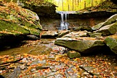 Autumn, Cave, Fall color, Flow, Leaf, Leaves, Midwest us, River, Stream, Tree, United states of america, Water, Waterfall* ohio, S19-1065164, agefotostock