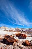 Arid, Arizona, Badlands, Desert, Dry, Petrified forest national park, Rock, Southwest, United states of america, Weather, Winter, Wood, S19-1107251, agefotostock