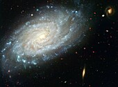 Amid a backdrop of far-off galaxies, the majestic dusty spiral, NGC 3370, looms in the foreground in this NASA Hubble Space Telescope image Recent observations taken with the Advanced Camera for Surveys show intricate spiral arm spotted with hot areas…