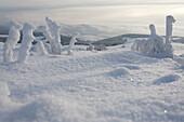 landscape, scenery, snow, snowy, snow-covered, snow, winter, near Gersfeld, Wasserkuppe, low mountain range, Rhoen, Hesse, Germany