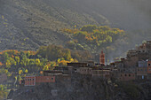 trees in autumn colours, village houses in afternoon light, Imlil, Marrekech area,  High Atlas, Morocco