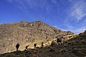 trekking in the High Atlas from Imlil, trekker group with mule, Toubkal Area, Morocco