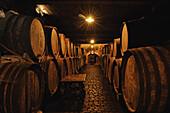 Wooden barrels in wine cellar, Ruta del Vino, Bodega Monje, El Sauzal, Tenerife, Canary Islands, Spain, Ruta del Vino, Bodega Monje, El Sauzal