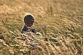 Little Girl In A Wheat Field, Somme (80), Picardy, France